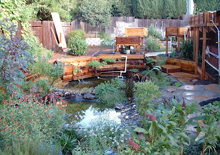 Backyard biology a backyard aquaponic pond system for Aquaponics pond design