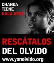 Canal Solidari