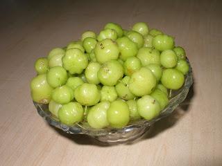http://1.bp.blogspot.com/_NGvqxTgLTM8/SOqShkMeGYI/AAAAAAAADcs/Hea9PEvl6MY/s320/nelli+kai+bowl.JPG