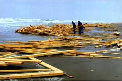 timber flotsam