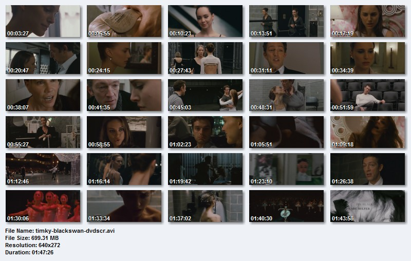 DL Black Swan 2010 DVDSCR XviD-TiMKY download on Hotfile Rapidshare