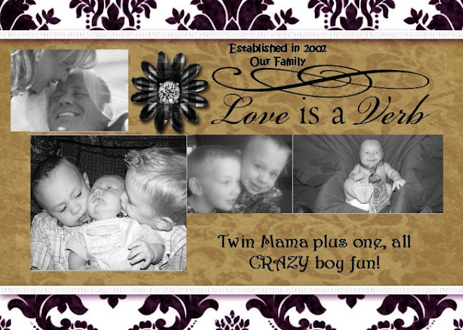 "Established in 2002 ""Our Family""         Mama of twins plus one, all crazy boy fun!"