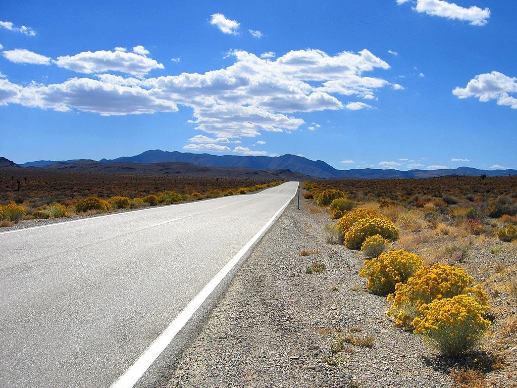 [open_road_large.jpg]