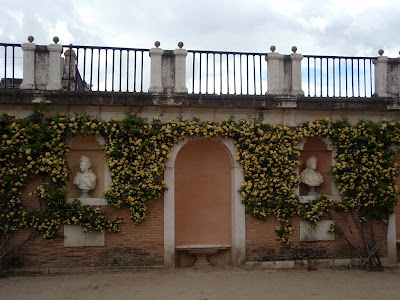 Color y forma el jard n de felipe ii en aranjuez for El jardin de aranjuez