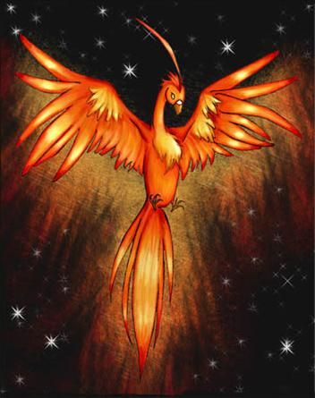 phoenix bird tattoos How to Draw a Phoenix Bird of