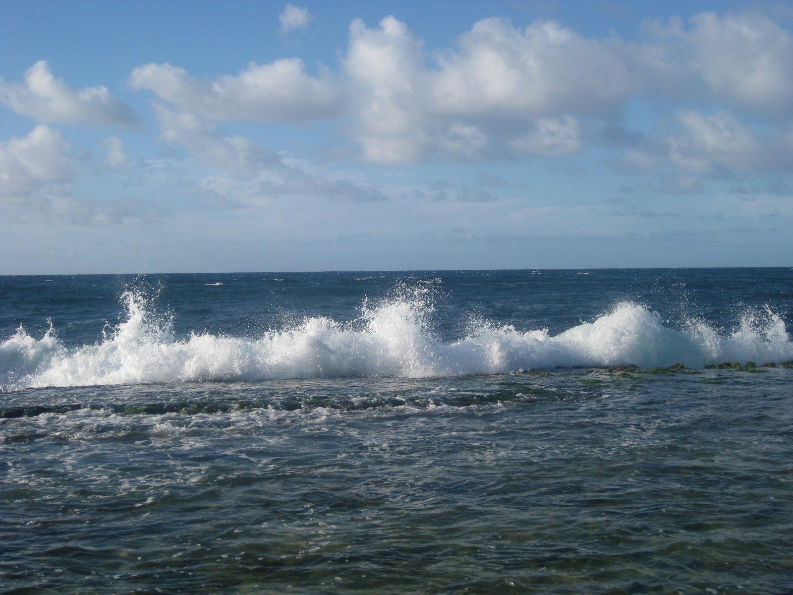 [Hawaii-Maui+July+'09+400.jpg]