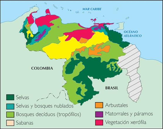 GEOGRAFÍA DE VENEZUELA Vegetación de Venezuela