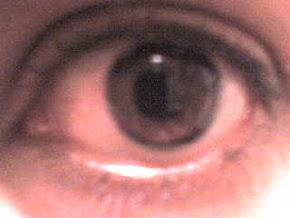 El ojo que todo observa