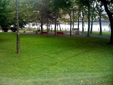 Blackwell Park Lawn