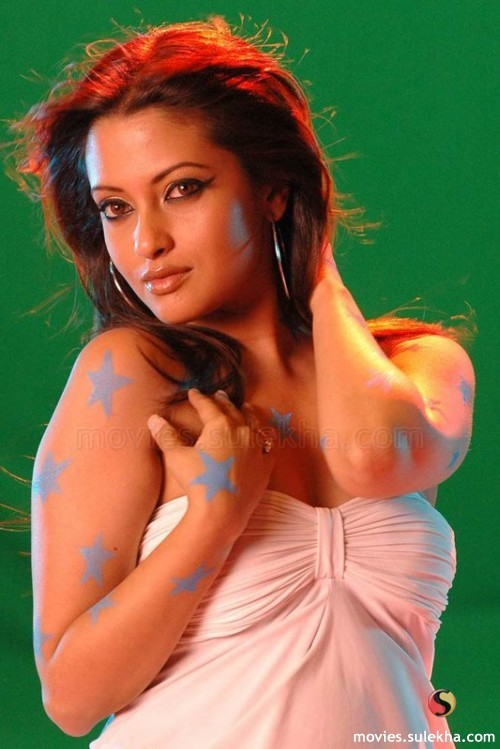 Actress Riya Sen Latest  Hot Stills wallpapers
