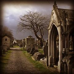 [cementerio+yare]