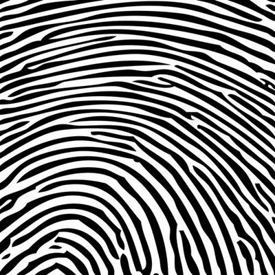 The Project Gutenberg eBook of The Science of Fingerprints, by The
