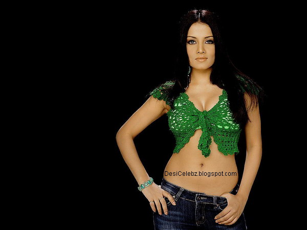 Celina Jaitley hot sexy still