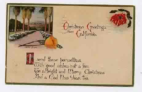 Gold country girls vintage christmas greetings from california vintage california christmas greeting postcards i have collected a few of these and may collect more since i am such a sucker for not only postcards m4hsunfo