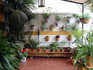 aqu tenemos varias jardineras con diferentes medidas
