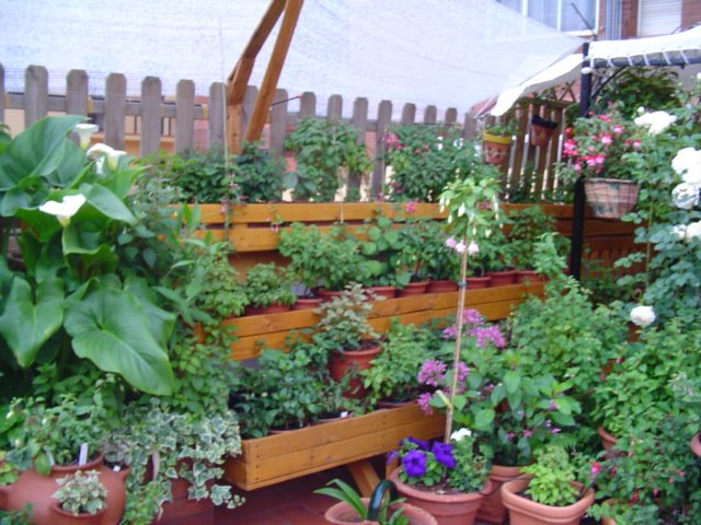3 ideas con palets para el jardin taringa for Ideas con palets para jardin