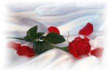 Regalet de Sant Jordi