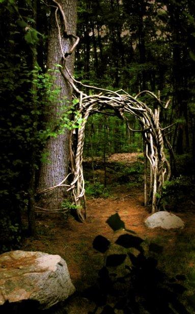 Bittersweet Arbor