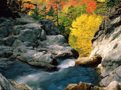Glen Ellis Water Falls Desktop Background Photo