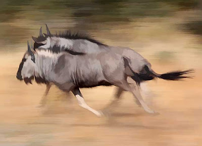 World fastest animals wildebeest - 5