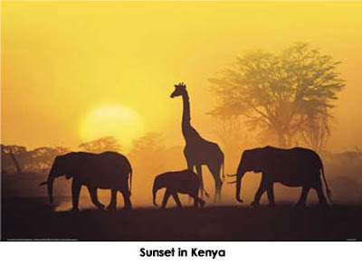 Sunset in Kenya Animals