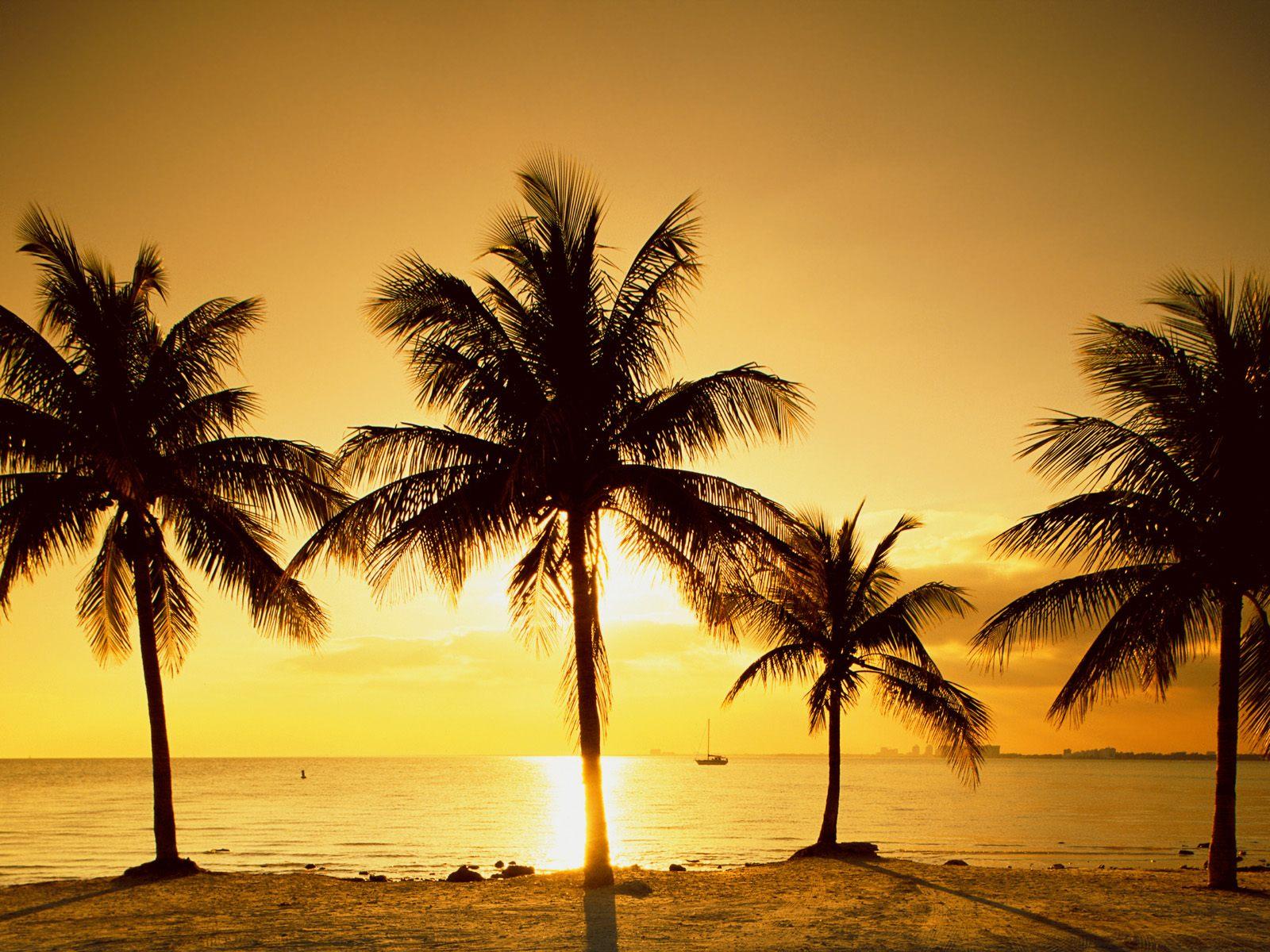 http://1.bp.blogspot.com/_N_mOB63qPaE/TOrmtCgkYdI/AAAAAAAAQ-c/3fP4nB77eX0/s1600/sunrise.beach-desktop-wallpaper.jpg