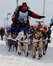 Iditarod Action 2010               (Anchorage) Aliy Zirkel