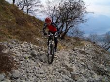 Samling Italia 2008
