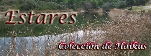 Estares (colección de haikus)
