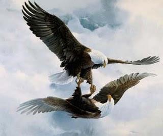 ESCORPIÃO, a águia - clicar na imagem
