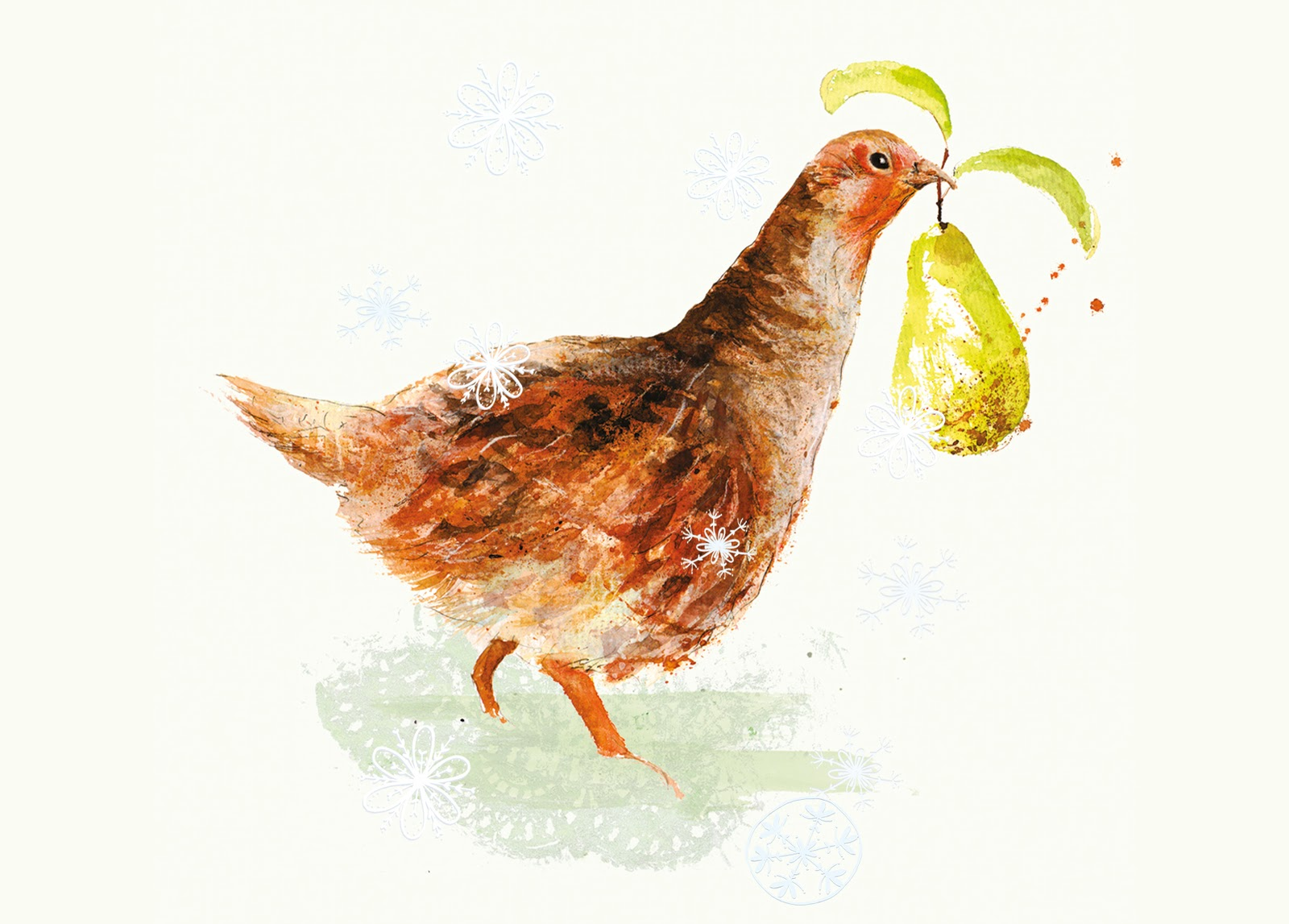 Suzie Foster Illustration And A Partridge In A Pear Tree