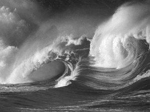 [wave.bmp]