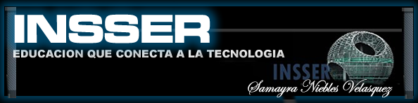 INSSER TECHNOLOGY