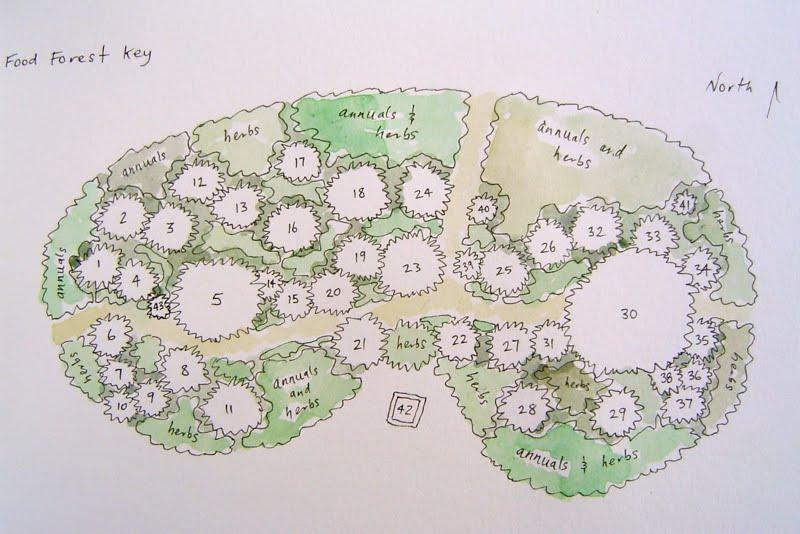 aaf plan garden