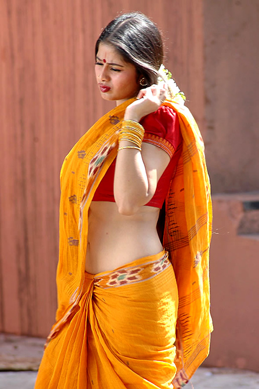 Sangeetha In Saree Images & Pictures - Becuo