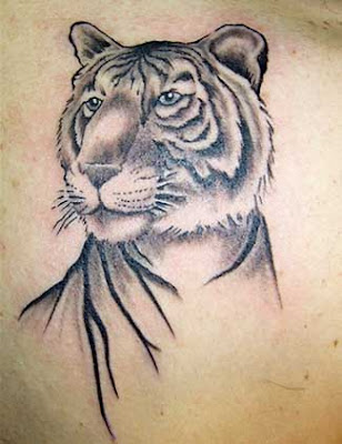 white tiger and blue dragon fight tattoo · White Tiger Tattoo - Rochester