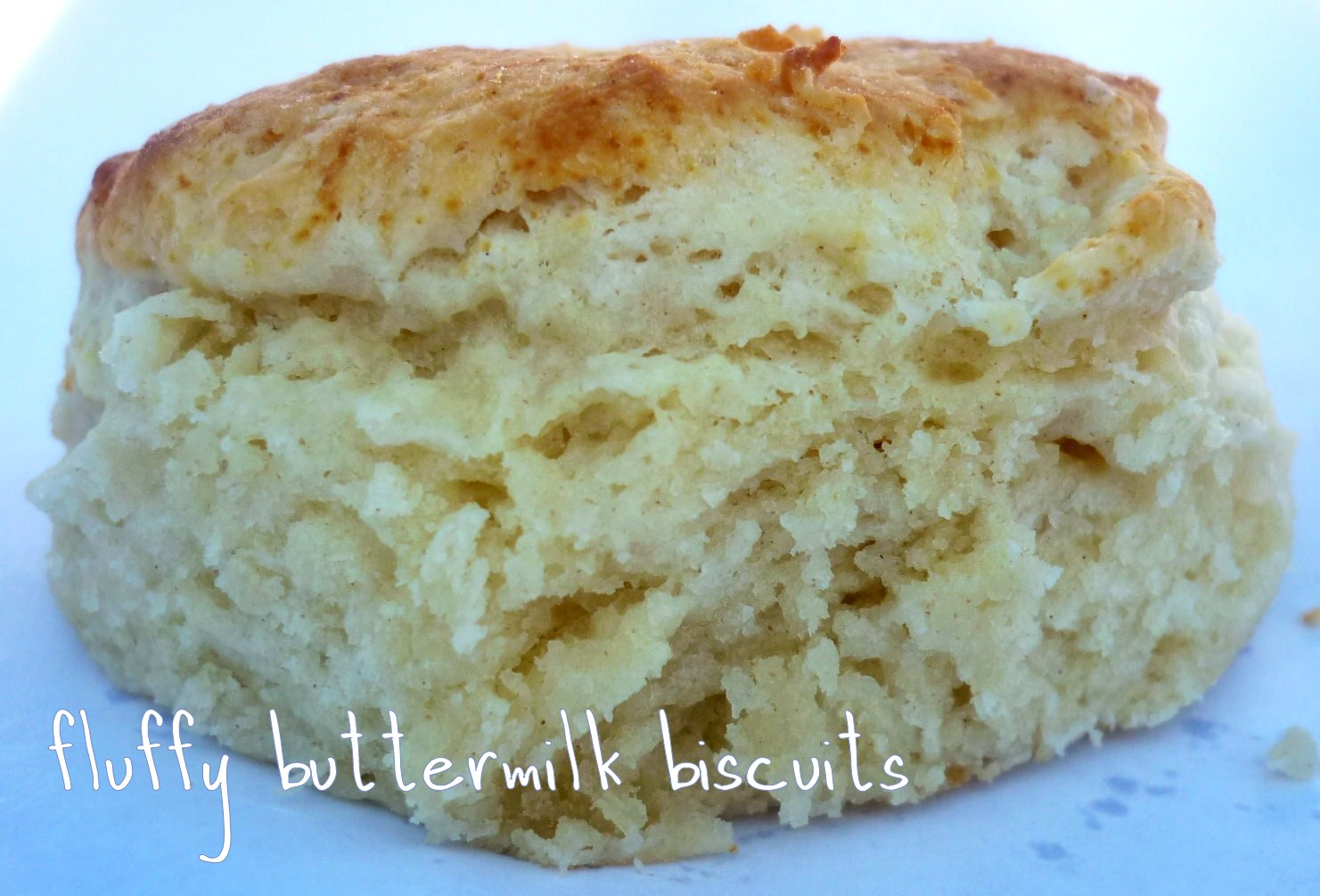 So Good Buttermilk Biscuits - Sprinkled with Flour