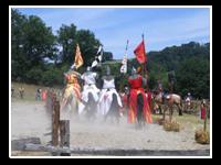 Festivals info