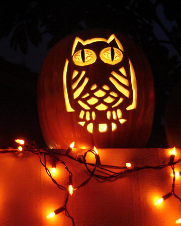 best of halloween09 owls xl Owl Pumpkin Carving Stencil