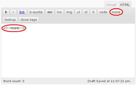 Como apresentar só os resumos dos posts na página inicial em WordPress 2