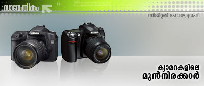 High-end Digital Cameras: Bridge Cameras and Digital Single Lens Reflex Cameras.