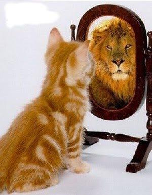 Resultado de imagen de Nos miramos al espejo y no vemos la realidad