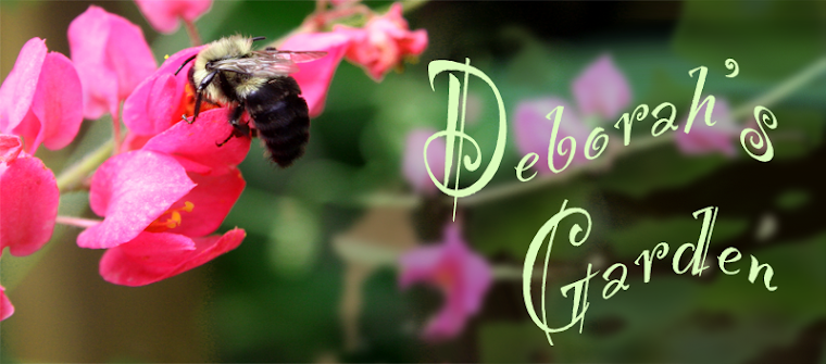 Deborah&#39;s Garden