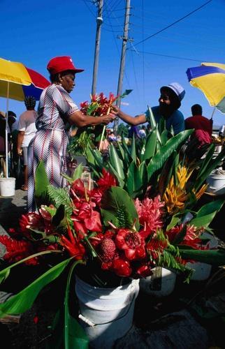 Selling flowers, Roseau Market