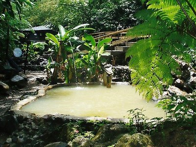 'Screws' Natural Sulphur Spa Bath - Wotten Waven, Dominica