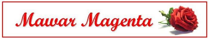 Mawar Magenta