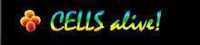 celulas celulas celulas