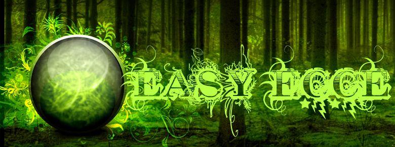 EASY ECCE