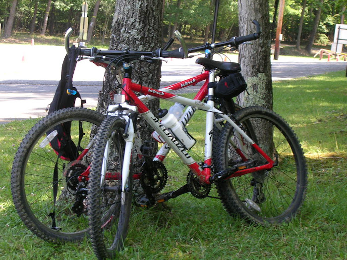 Our mountain bikes