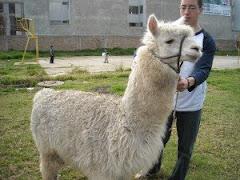 Nick and Llama at the  orphanage